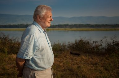 Sir David Attenborough - (C) Nick Lyon - Photographer: Nick Lyon