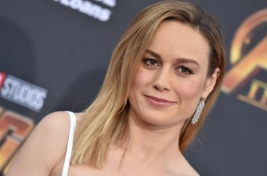 HOLLYWOOD, CA - APRIL 23: Actress Brie Larson attends the premiere of Disney and Marvel's 'Avengers: Infinity War' on April 23, 2018 in Hollywood, California. (Photo by Axelle/Bauer-Griffin/FilmMagic)